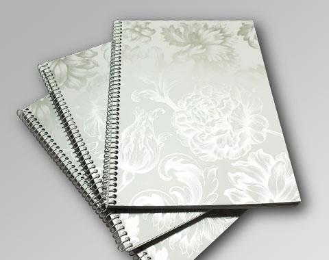 ejemplo01-tinta-plata